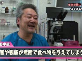 獣医師会 コピー