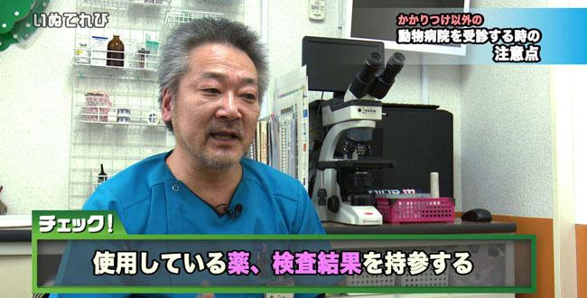 獣医師会 02