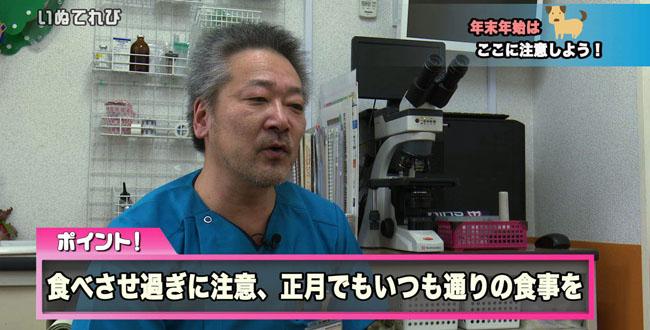獣医師会 コピー01