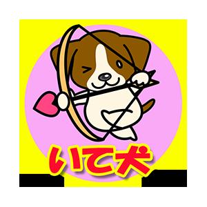 いて犬(11/23~12/21)