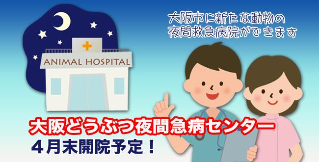 大阪どうぶつ夜間急病センター