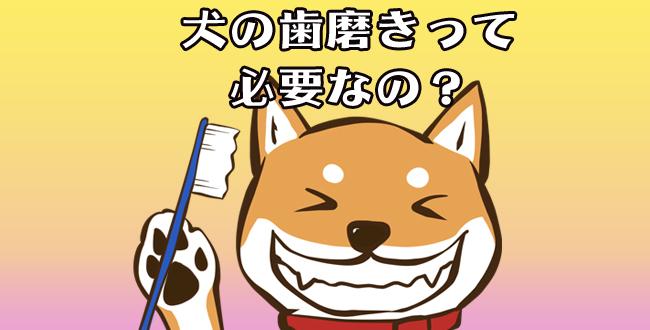 歯磨き01